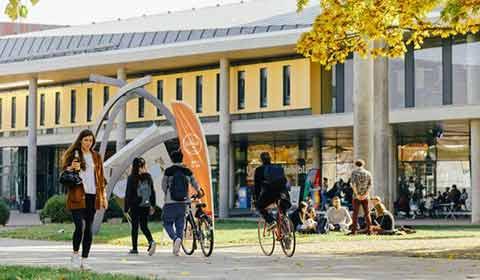 Becas DAAD para Estudiantes Internacionales (Alemania) | ¿Qué tiene de nuevo las Becas DAAD? | Estudia Gratis - Sitio Web Oficial - becas.org.es
